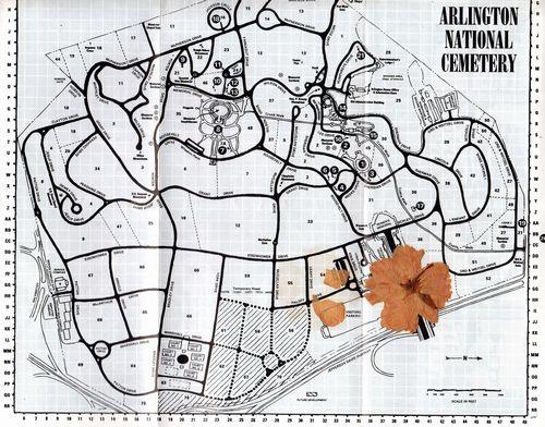 arlington map.jpg